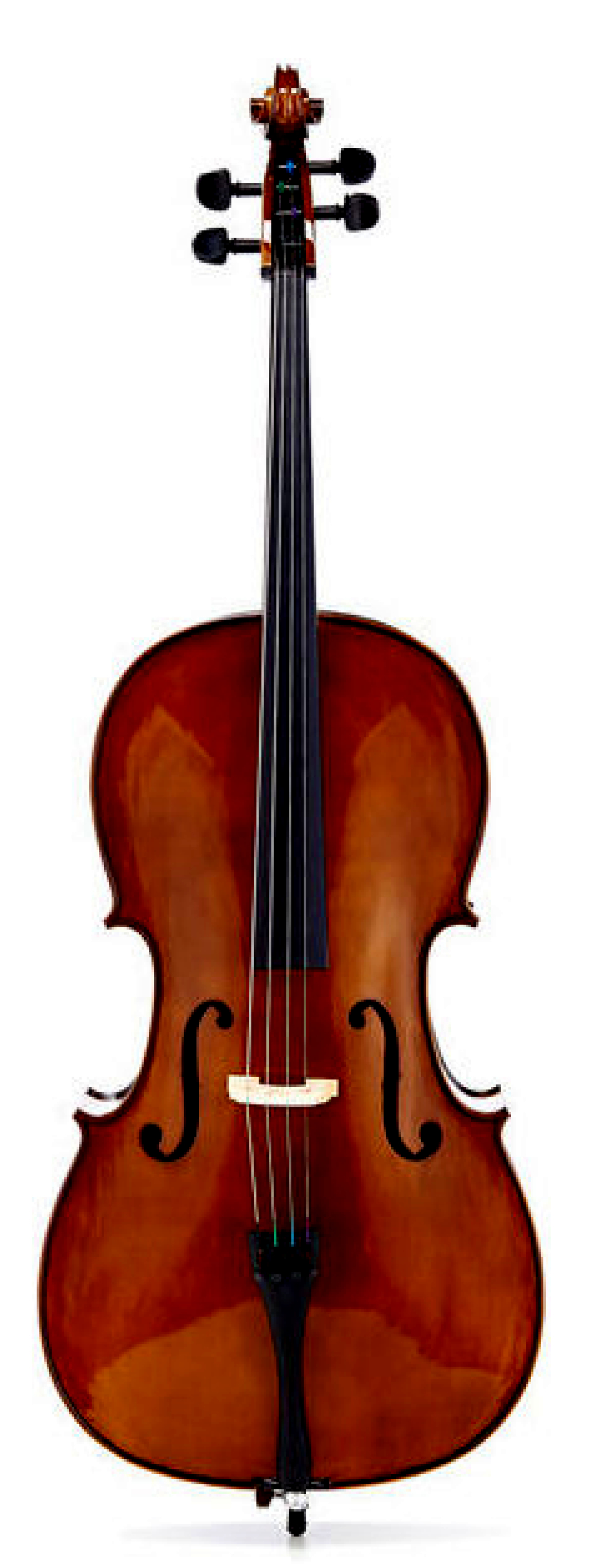 ENDEAVOUR 'Disciple' Cello