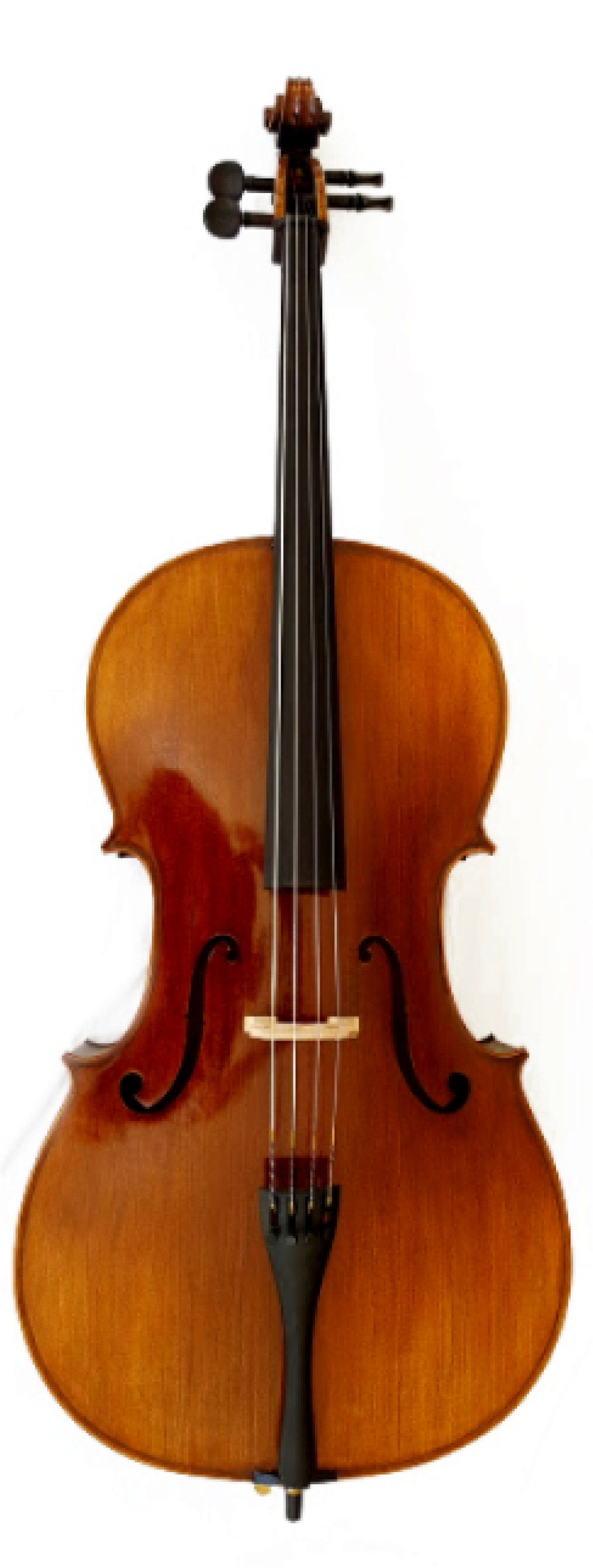 ENDEAVOUR 'MAESTRO' CELLO